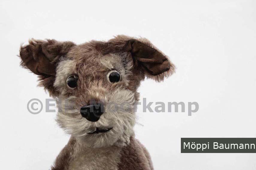 Fotografie Köln, Bild Köln, Köln bei Nacht, Fotos Köln, Bilderbuch köln, Elke Moorkamp